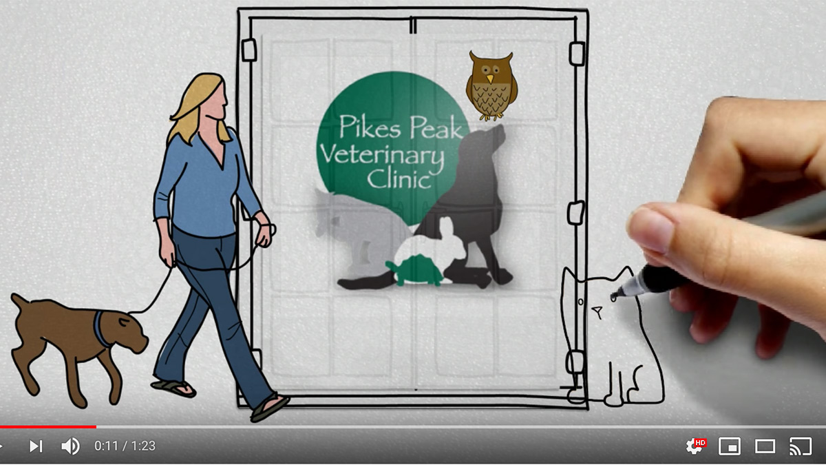 Pikes Peak Vet whiteboard animation video