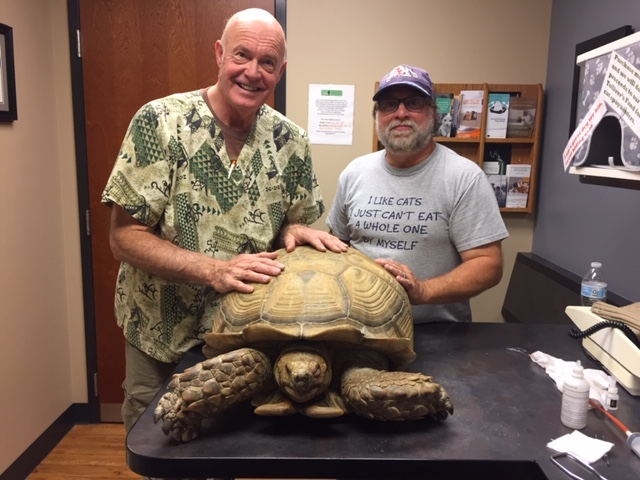 Pikes Peak Veterinary Clinic PPVC Colorado Springs vet. Dr Fowler tortoise
